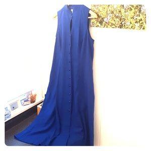 True Blue Button Down Dress